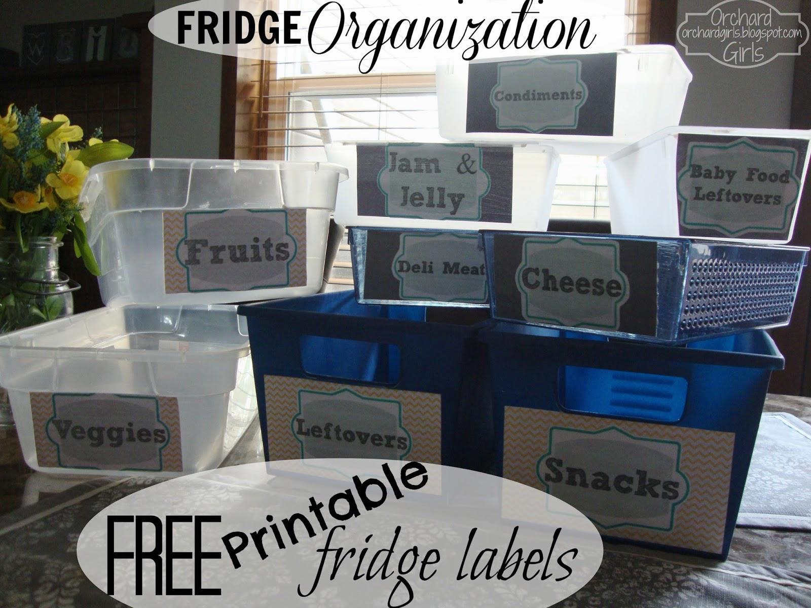 Orchard Girls Dollar Store Fridge Makeover Free