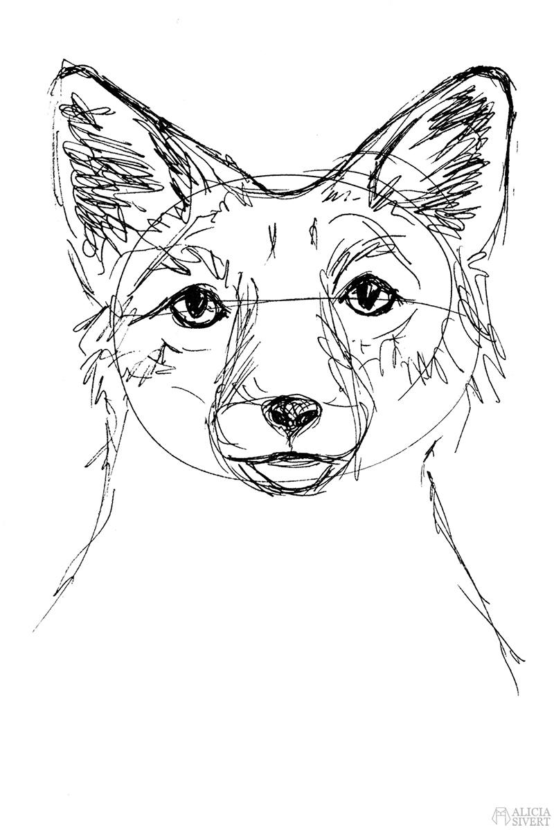 Teckningsutmaningen i juni, foto av Alicia Sivertsson. aliciasivert teckning teckningar teckna skiss skissa rita skapa skapande utmaning kreativitet skaparutmaning bloggutmaning månadsutmaning kreativ penna pennor tusch tuschpenna bläckpenna räv skiss