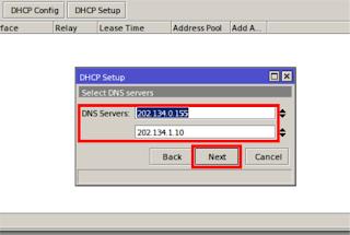 Masukkan DNS lalu Next