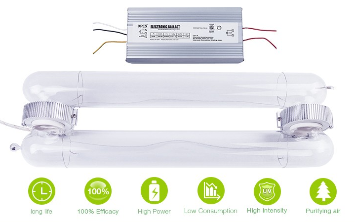 Induction Light What Uv Lamp Products Can Help Florida