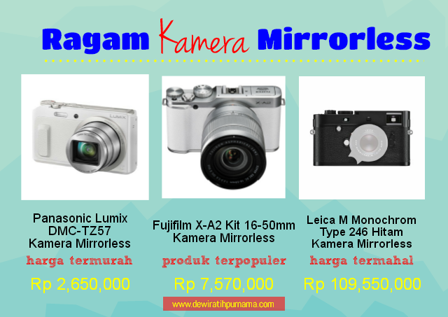 Fuji film mirrorless