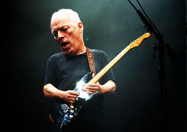 David Gilmour | Ximinia