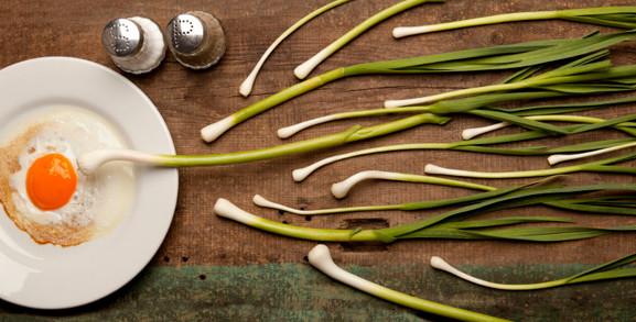 Makanan yang Bisa Tingkatkan Jumlah Sperma
