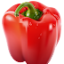 Capsicum  |  Red Capsicum  |  Red Capsicum PNG  | Capsicum PNG