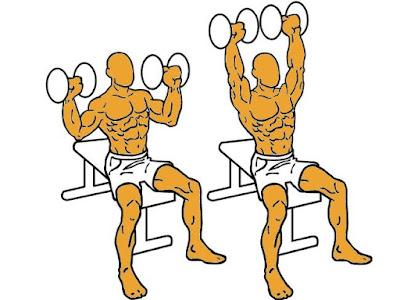 Ejercicios para ganar músculo