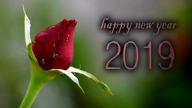 new year 2019 kannada whatsapp status