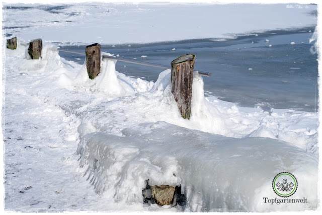 Gartenblog Topfgartenwelt Diana lernt Fotografieren Wallersee im Winter: Foto Tipps