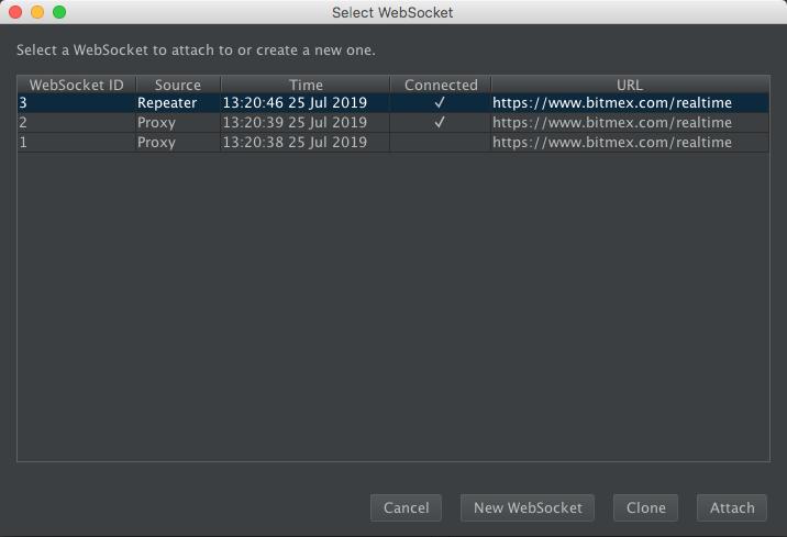 Full Burp Suite screenshot