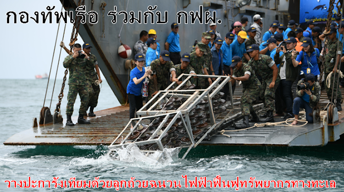 กองทัพเรือ ร่วมกับ กฟผ. สานต่อโครงการบ้านปลา   วางปะการังเทียมด้วยลูกถ้วยฉนวนไฟฟ้าฟื้นฟูทรัพยากรทางทะเล