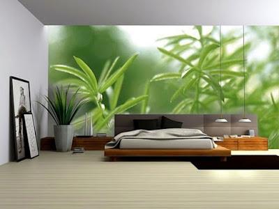 Las 10 mejores formas de decorar nuestra casa con plantas de interior (I)