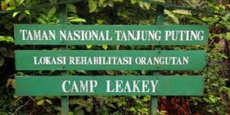 Permalink ke Taman Nasional Tanjung Puting Kalimantan Tengah