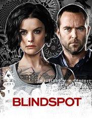 Blindspot Complete Season (1-4) 720p & 480p Direct Download