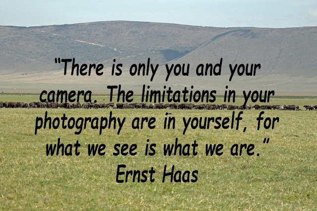 Buy poster of Ernst Haas Quote
