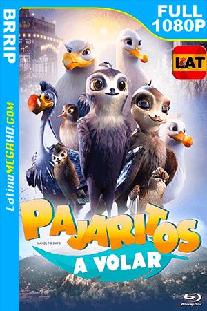 Pajaritos a Volar (2019) Latino FULL HD 1080P ()