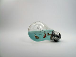 foto-manipulasi-ikan-dalam-lampu-picsart