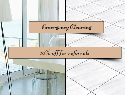 Professional Cleaning Compnaies In West Palm Beach Fl