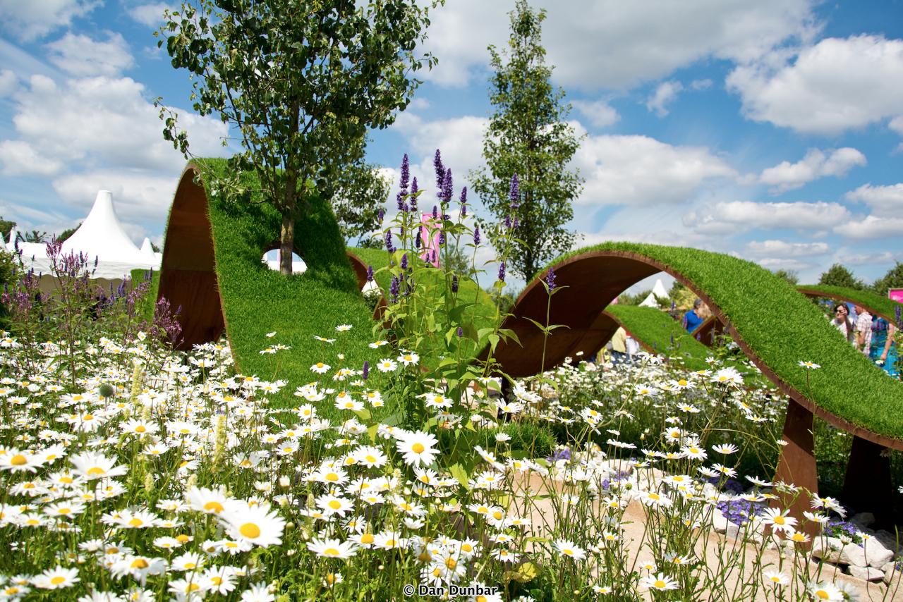 Dan dunbar photography rhs hampton court flower show 2016 - Hampton court flower show ...