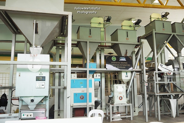 Showcase Of The Rice Processing Machinery