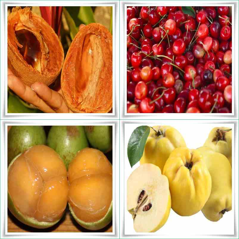 Fruit Names A-Z With Pictures