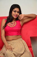 Akshita super cute Pink Choli at south indian thalis and filmy breakfast in Filmy Junction inaguration by Gopichand ~  Exclusive 096.JPG