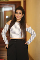 Manjusha in sleevelss crop top and black skirt at Darshakudu pre release ~  Exclusive Celebrities Galleries 111.JPG