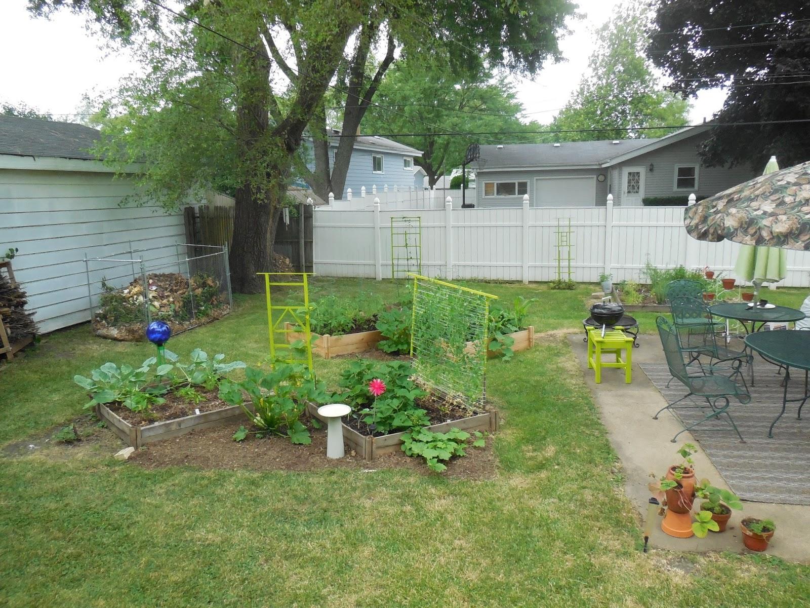 Backyard Patch Herbal Blog Backyard Garden Update July