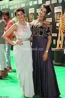 iifa utsavam 2017 awards 2 day1 2903171247 0007 at IIFA Utsavam Awards.jpg