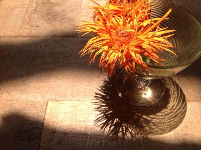 グラスと花の影