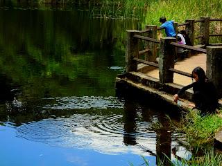 Lago das Carpas - Close de Criança no Deck - Parque da Cantareira, São Paulo