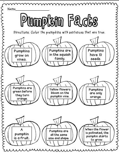 pumpkin diagram with labels