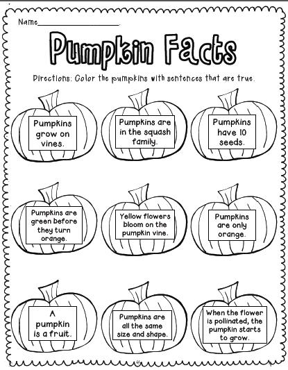Sarah's First Grade Snippets: Pumpkin Freebies!