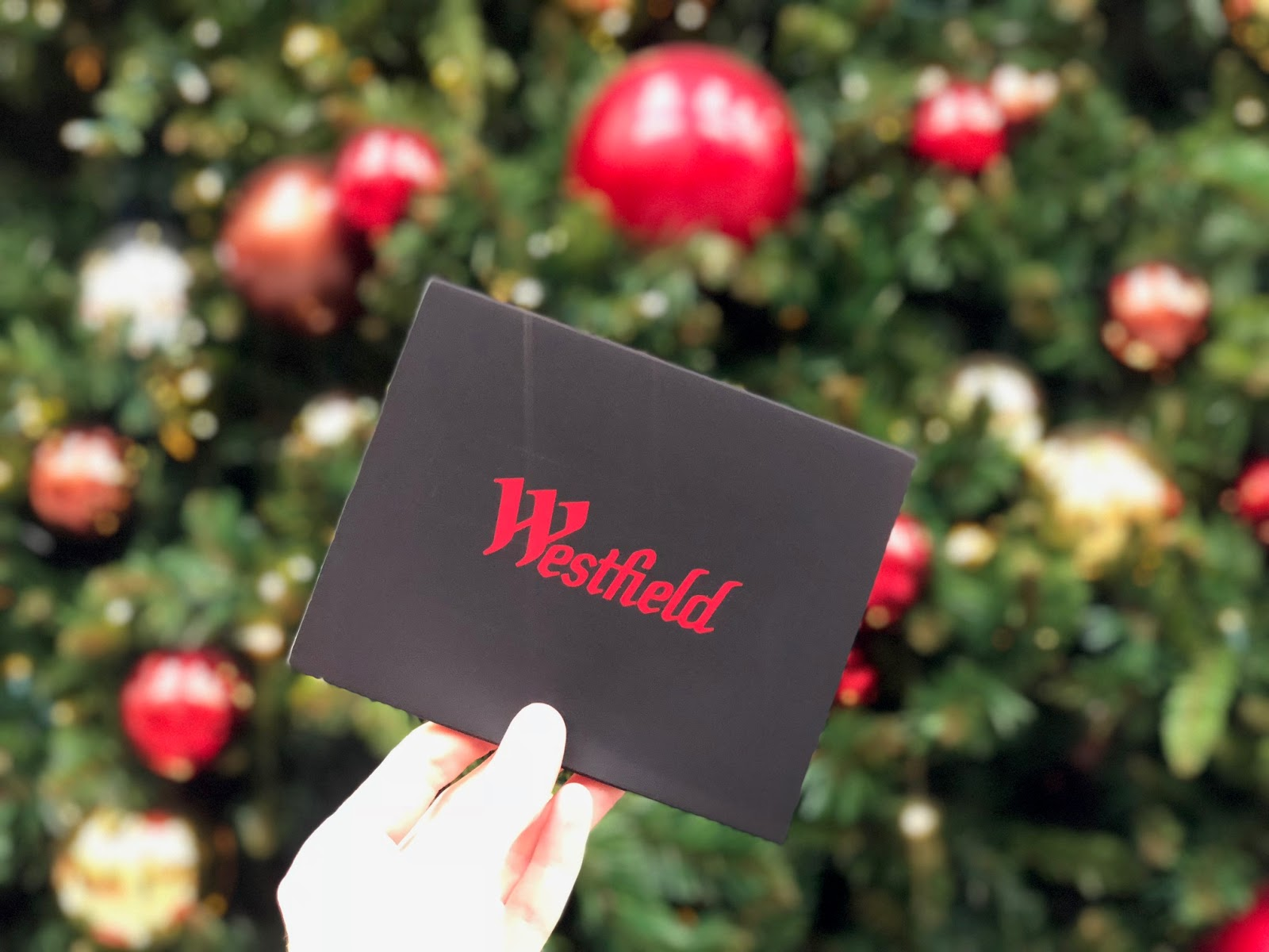 Holiday happenings at westfield shopping center 100 gift card this year has literally flown by and i find myself less than 3 weeks from christmas with a ton of shopping left to do deep breath solutioingenieria Images