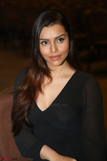 Kyra Dutta in black At Rogue Movie Audio Launch ~  013.JPG