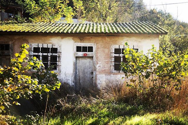 Bu Eski Evlerin Dili Olsa da Konuşsa | Vlog Yazıları #2