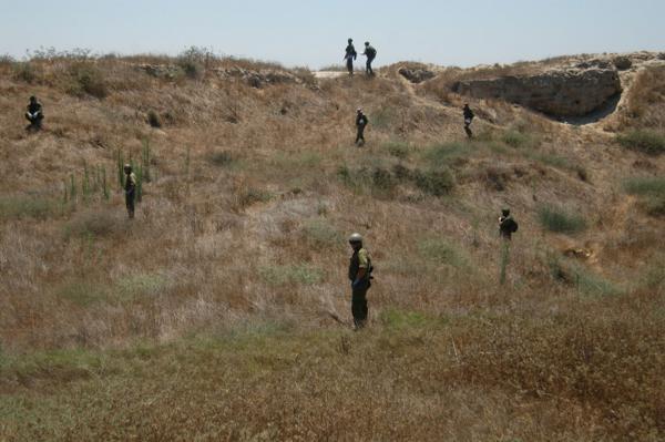 La unidad está compuesta por biólogos, arqueólogos y otros especialistas (Prensa FDI)