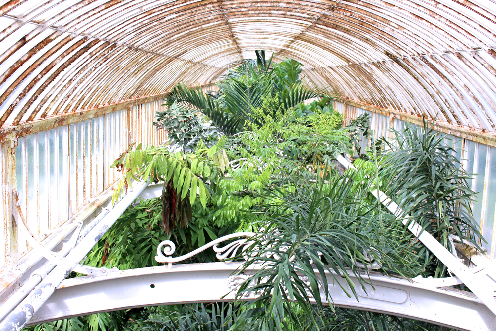 Palm house glasshouse at Kew Gardens in Spring - London lifestyle blog