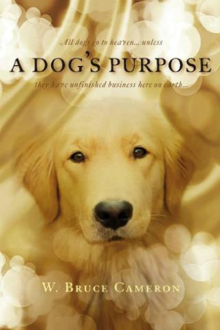 A Dog's Purpose [2017] [DVDR] [NTSC] [Latino]
