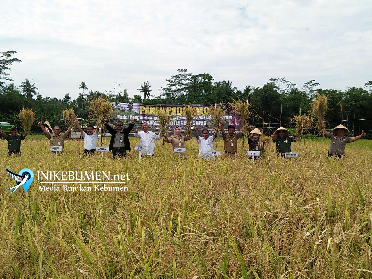 Largo Super Puring Bakal Diduplikasi di Seluruh Indonesia