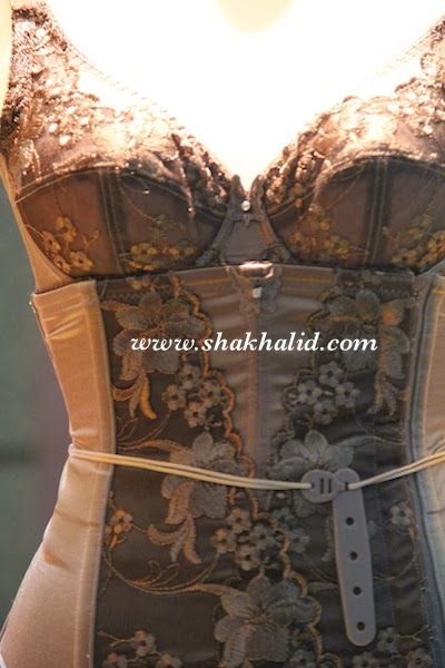 front part of premium beautiful elegance