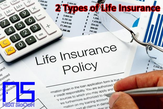 Types of Life Insurance That Need to be Known, What is Types of Life Insurance That Need to be Known, Understanding Types of Life Insurance That Need to be Known, Explanation of Types of Life Insurance That Need to be Known, Types of Life Insurance That Need to be Known for Beginners Types of Life Insurance That Need to be Known, Learning Types of Life Insurance That Need to be Known, Learning Guide Types of Life Insurance That Need to be Known, Making Money from Types of Life Insurance That Need to be Known, Earn Money from Types of Life Insurance That Need to be Known, Tutorial Types of Life Insurance That Need to be Known , How to Make Money from Types of Life Insurance That Need to be Known.