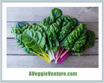Tired of the same old vegetables the same old ways? Try chard, the tender leafy green with the colorful stems, either raw or cooked. Recipes & inspiration in this collection of Chard Recipes ♥ AVeggieVenture.com. Many Weight Watchers, vegan, gluten-free, low-carb, paleo and whole30 recipes, from weeknight easy to weekend special.