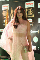 Nidhi Subbaiah Glamorous Pics in Transparent Peachy Gown at IIFA Utsavam Awards 2017  HD Exclusive Pics 40.JPG