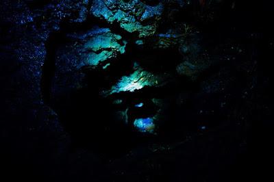Cuevas de Santo Tomas Viñales Cuba