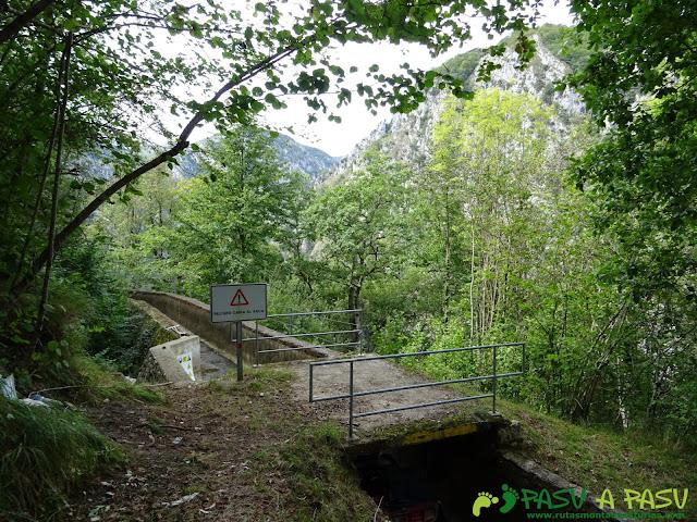 Canal de Reñinuevo: Puente sobre Canal
