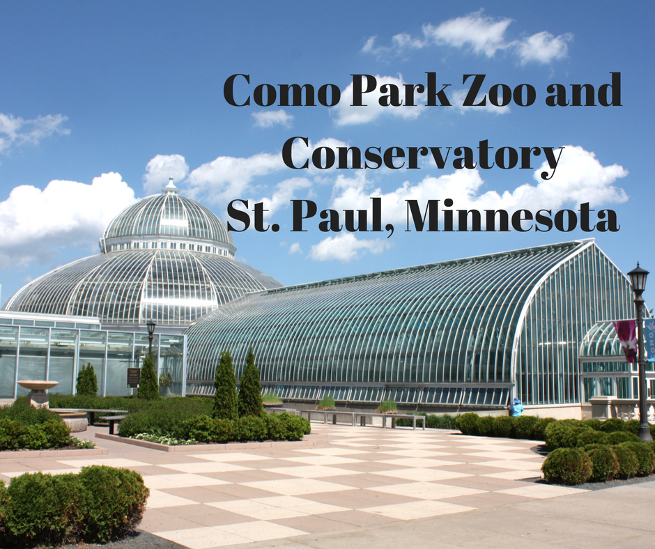 A Little Time And A Keyboard Como Park Zoo And Conservatory In St Paul Minnesota