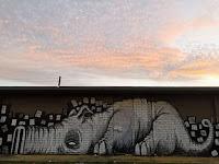 Street art by Skulk in Miller Sydney