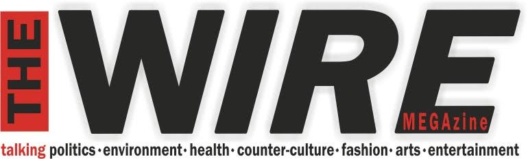 The Wire Megazine Concert Blog