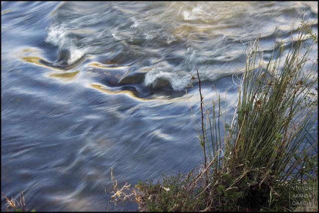 fotografía, naturaleza, RíoTúria, Valencia, Manises, agua, movimiento