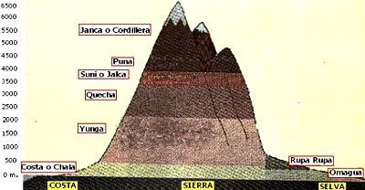 Dibujo de las 8 regiones naturales del Perú