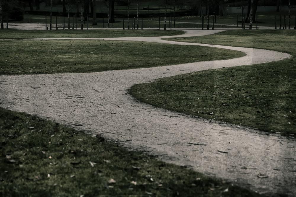 Kaivopuisto, Helsinki, Suomi, Finland, experience finland, discover, outdoors, myhelsinki, puisto, luonto, ilta, evening, scandinavia, nordic, nord, fall, autumn, syksy, syysilta, Visualaddict, valokuvaaja, Frida Steiner, luontovalokuva